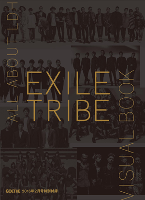 ALL ABOUT LDH EXILE TRIBE VISUAL BOOK
