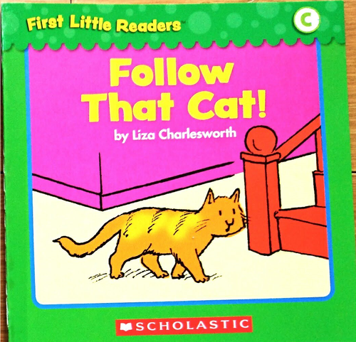 Follow That Cat!